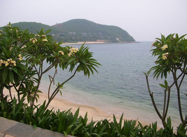 Дорога в отель Мандарин. Хайнань