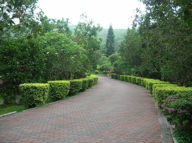 Дорога для прогулок в парке Наньшань. Хайнань