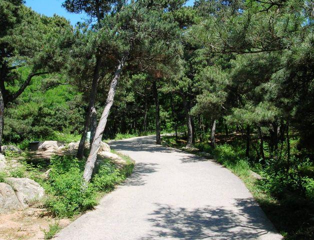 Тропинка в парке Леньфэншань. Бэйдайхэ