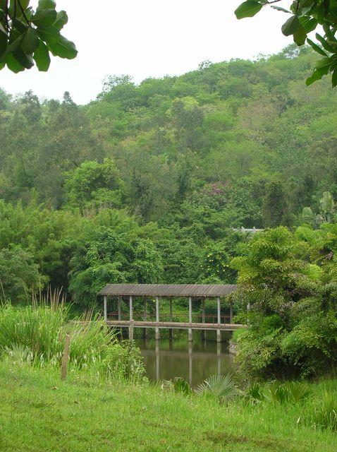 Мостик на озере. Буддистский комплекс Наньшань. Хайнань