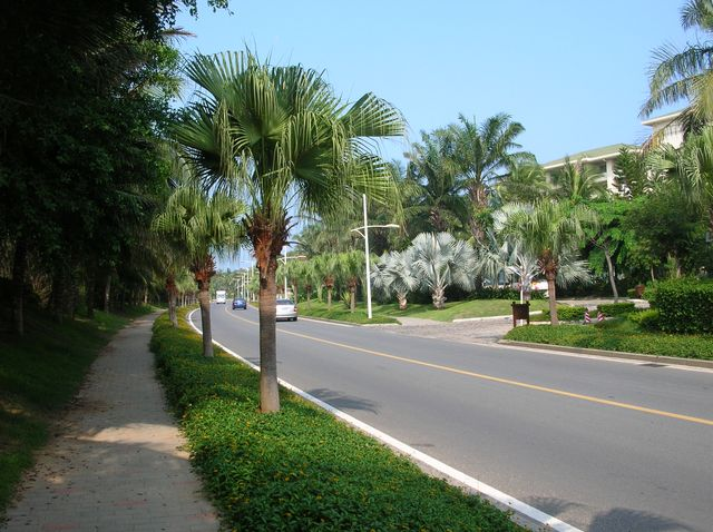 Улица возле отелей в бухте Ялунвань. Хайнань