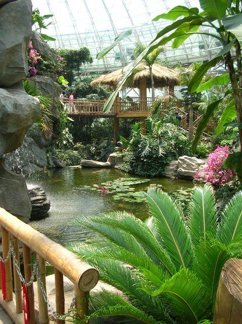 Ботанический сад Даляня