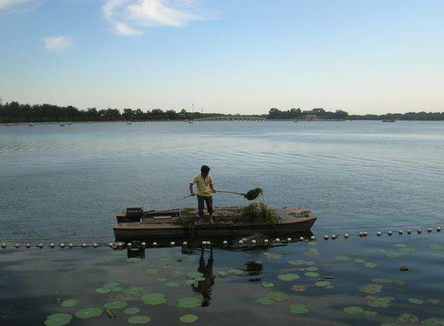 Чистка озера Куньминху от водорослей. Пекин