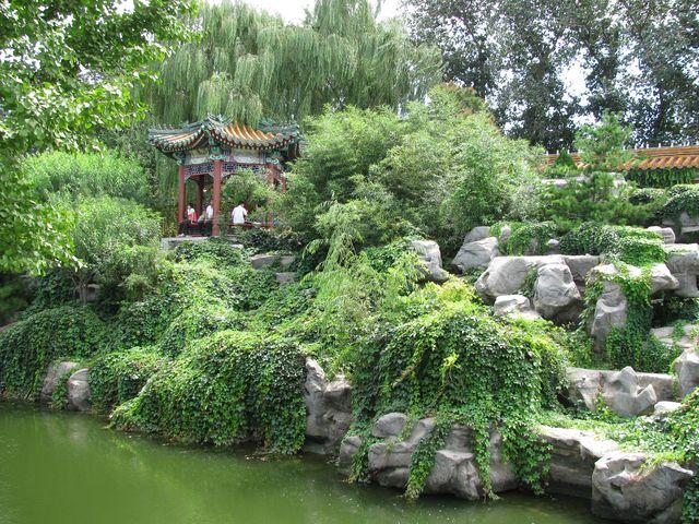 Живые растения красиво дополняют искусственные постройки