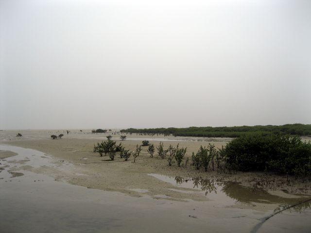 Отлив на море возле города Бэйхай
