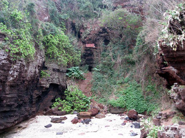 Скалы, покрытые тропической растительностью возле морского побережья города Бэйхай
