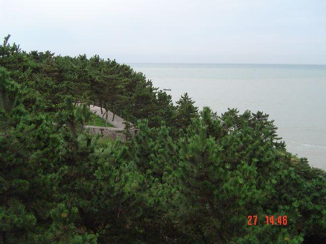 Дорожка утопающая в зеленых соснах идет вдоль всего побережья парка
