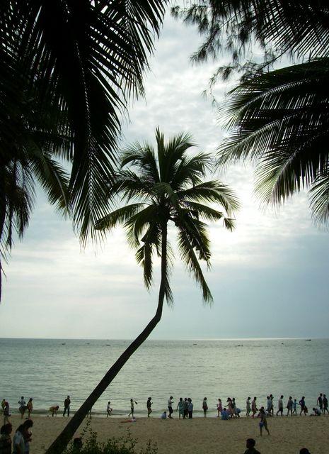 Море и пальмы. Хайнань