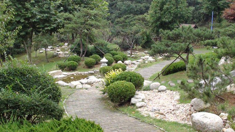 Китайский садик. Далянь