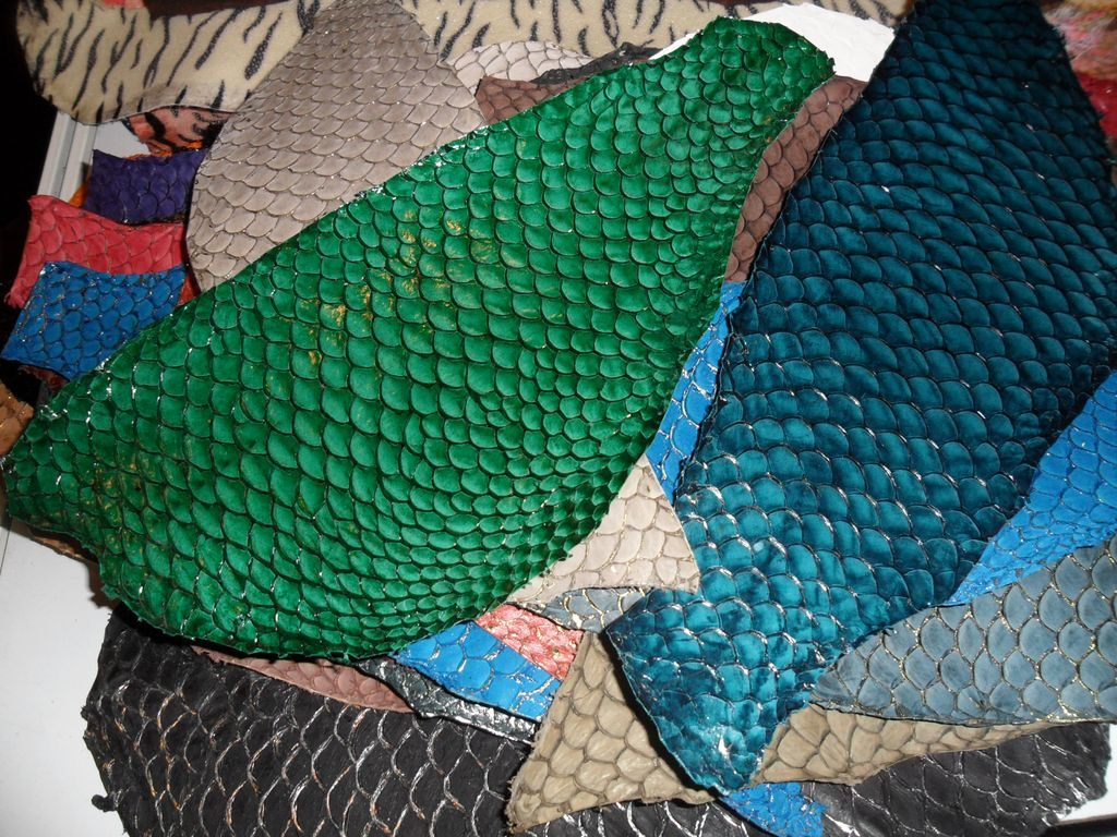 Рыбья кожа. Шеньчжень