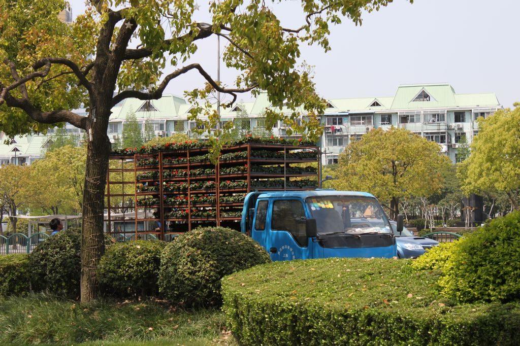 Машина для перевозки цветов. Шанхай