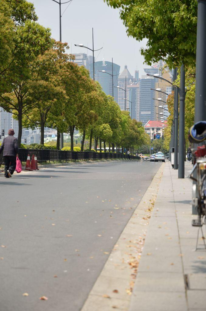 Аллея с видом на район Пудун. Шанхай