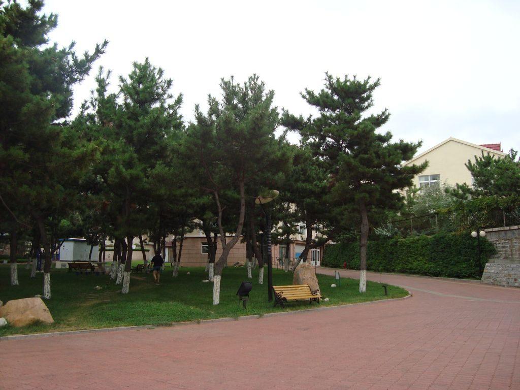 Территория возле Аппартаментов, г. Вэйхай