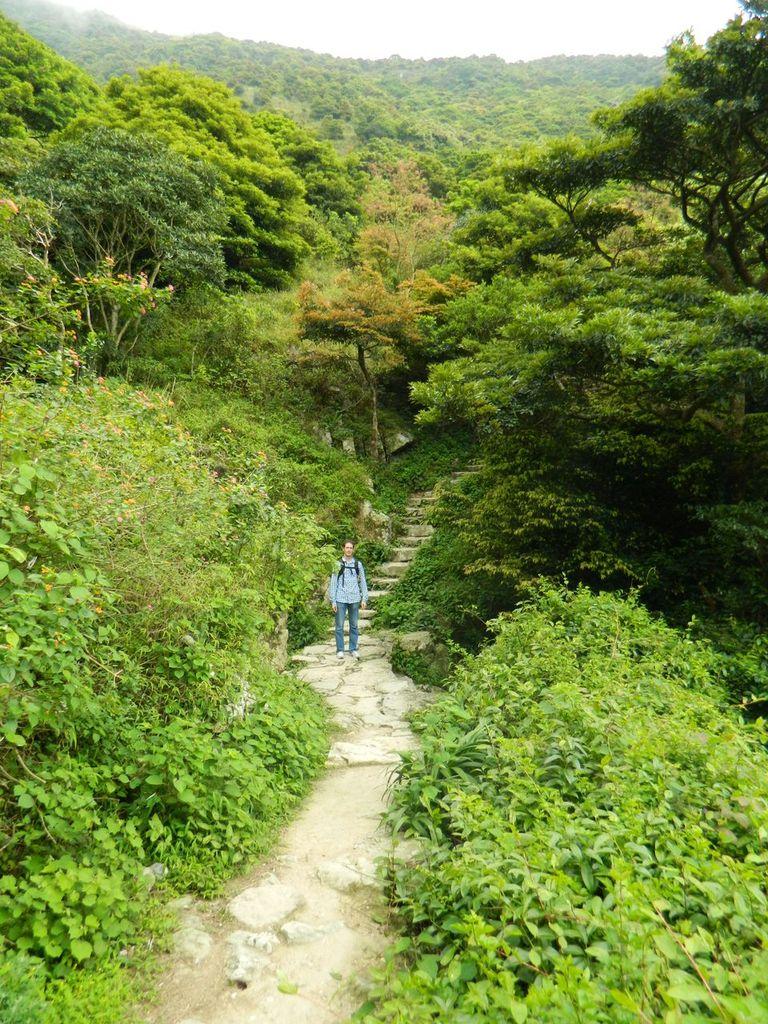 Дорога на пик. Гонконг