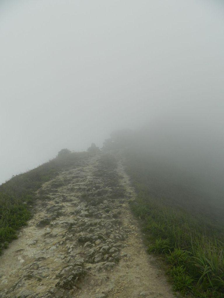 Где-то там вершина пика Лантау