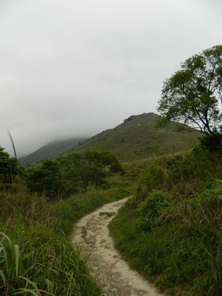 Тропа с пика Лантау