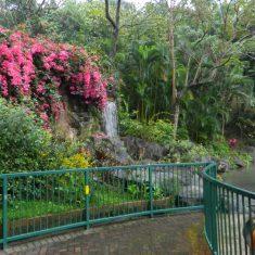 Shing Mun Valley Park, Гонконг
