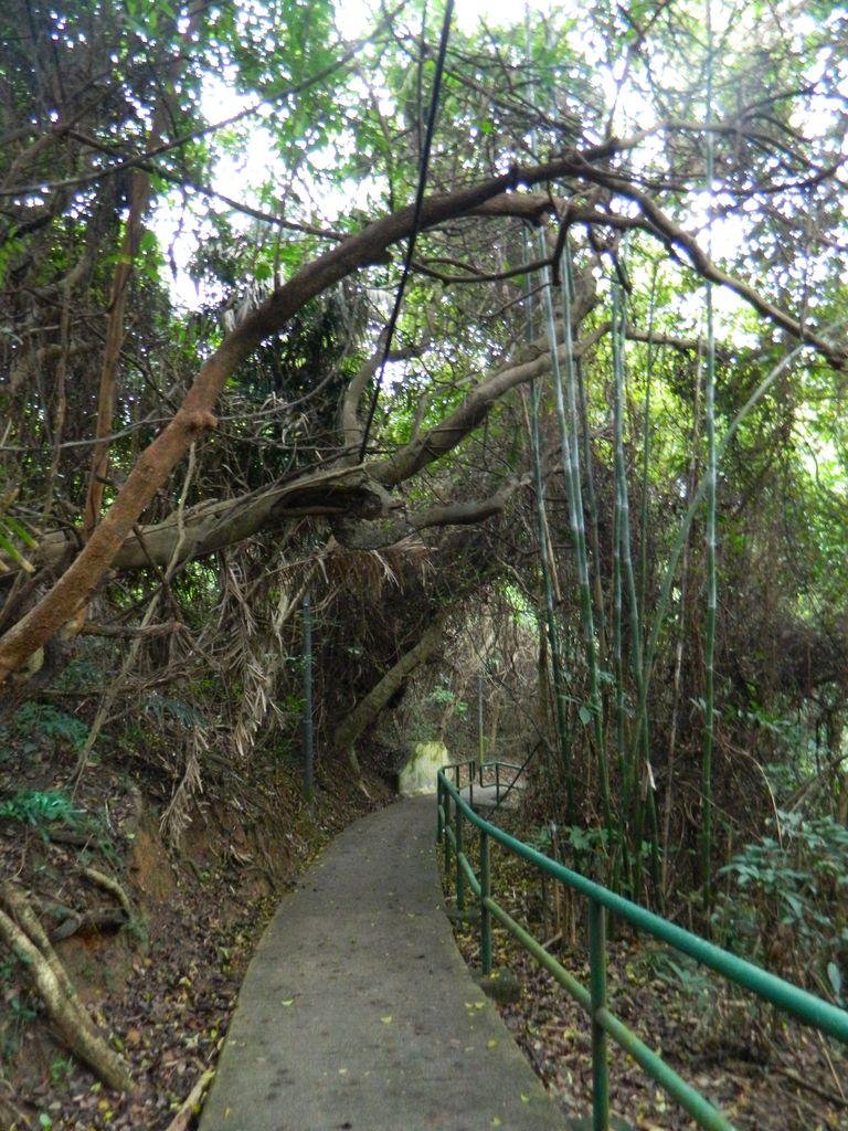 На семейной тропе, остров Ламма, Гонконг