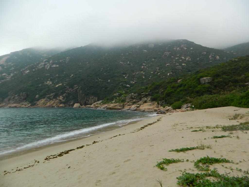 В летний период на пляже Sham Wan острова Ламма откладывают яйца морские черепахи