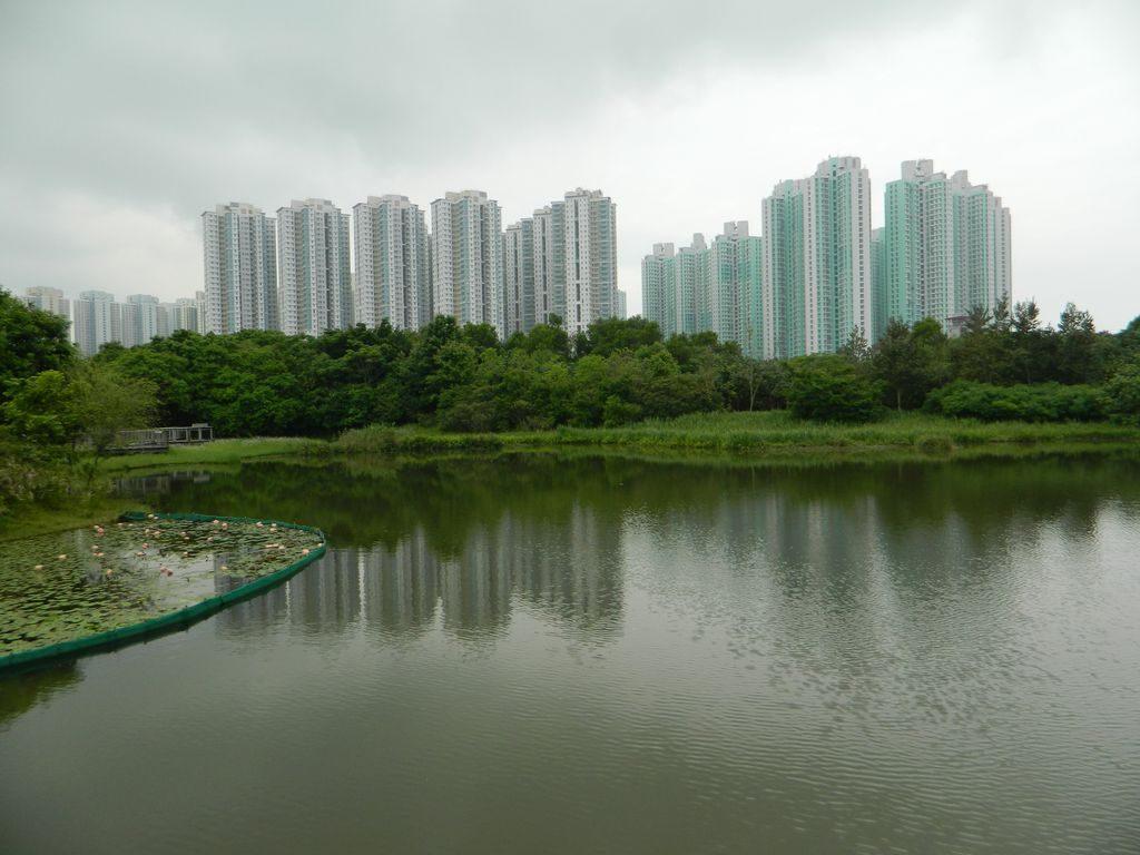 Парк водно-болотных угодий, Гонконг