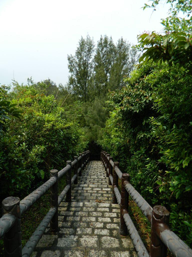 Семейная тропа острова Ченг Чау, Гонконг