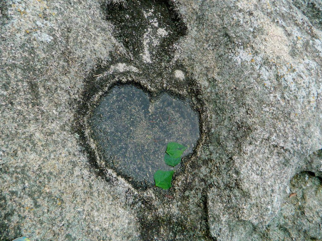 Сердце на камнях, Гонконг