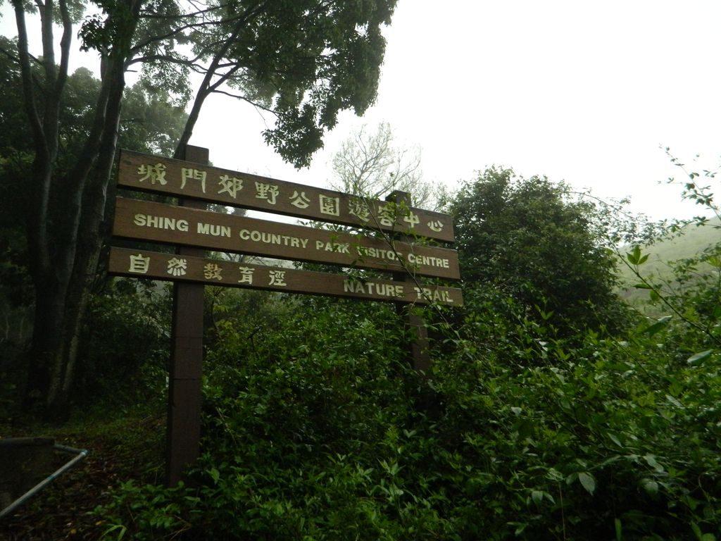 Указатели маршрутов в парке, Гонконг