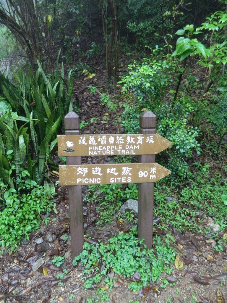 Указатели маршрутов в Shing Mun Park, Гонконг