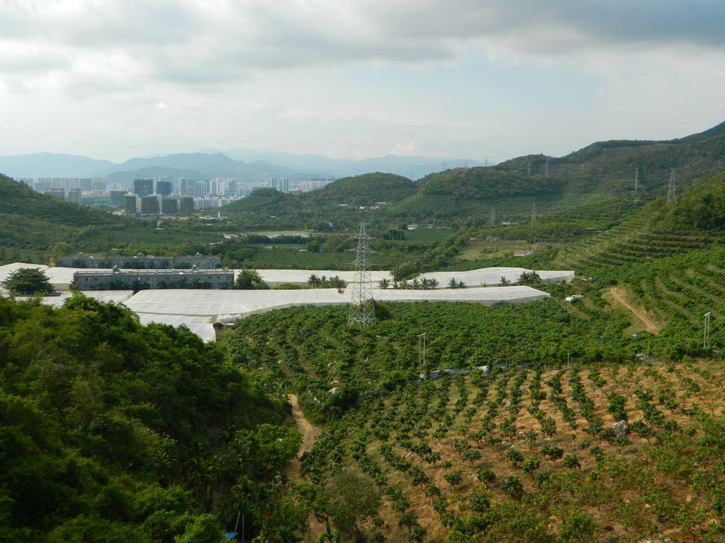 Вид на огороды и город Санья с канатной дороги, парк Феникс