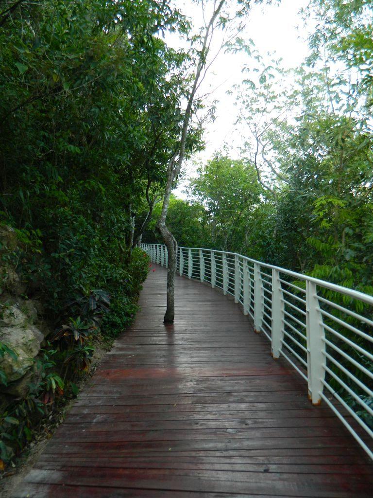 Дорожки в парке Феникс, Хайнань