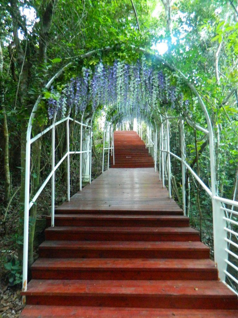 Тропа влюбленных в парке Феникс, Хайнань