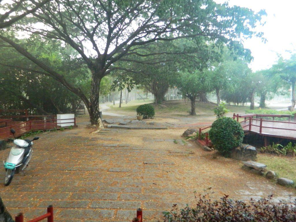 Дождь на Хайнане