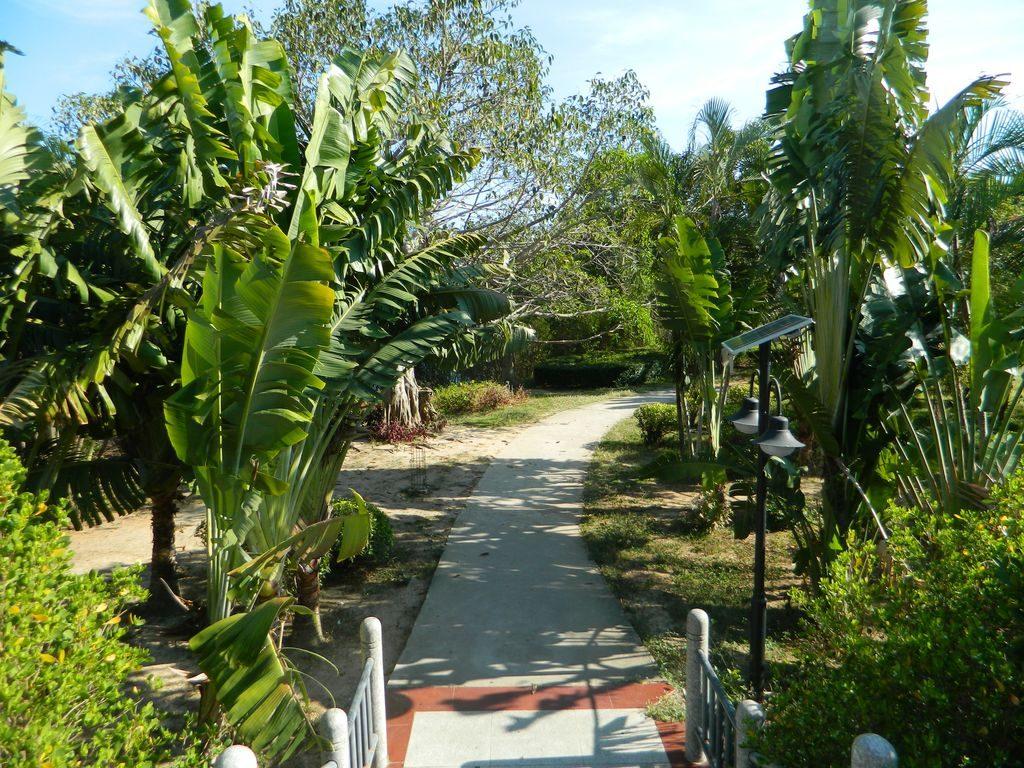 Дорожки в Bailu Park, город Санья
