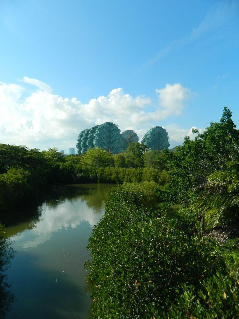 Вид на дома-деревья из парка Байлу. Санья