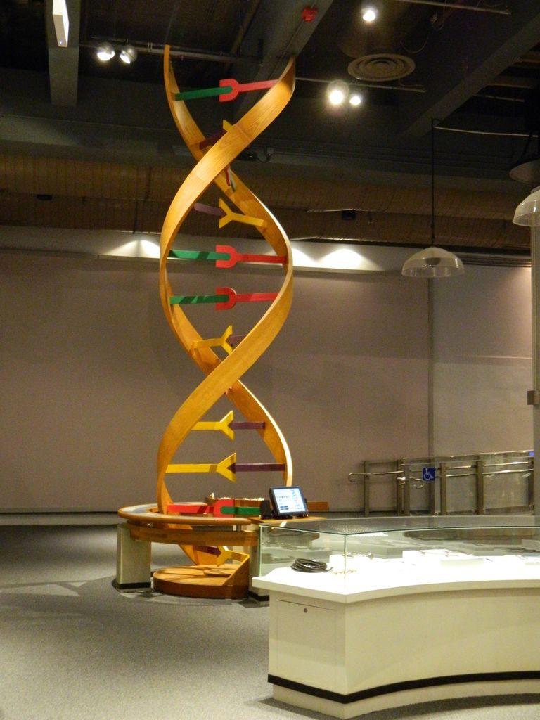 Научный музей Гонконга