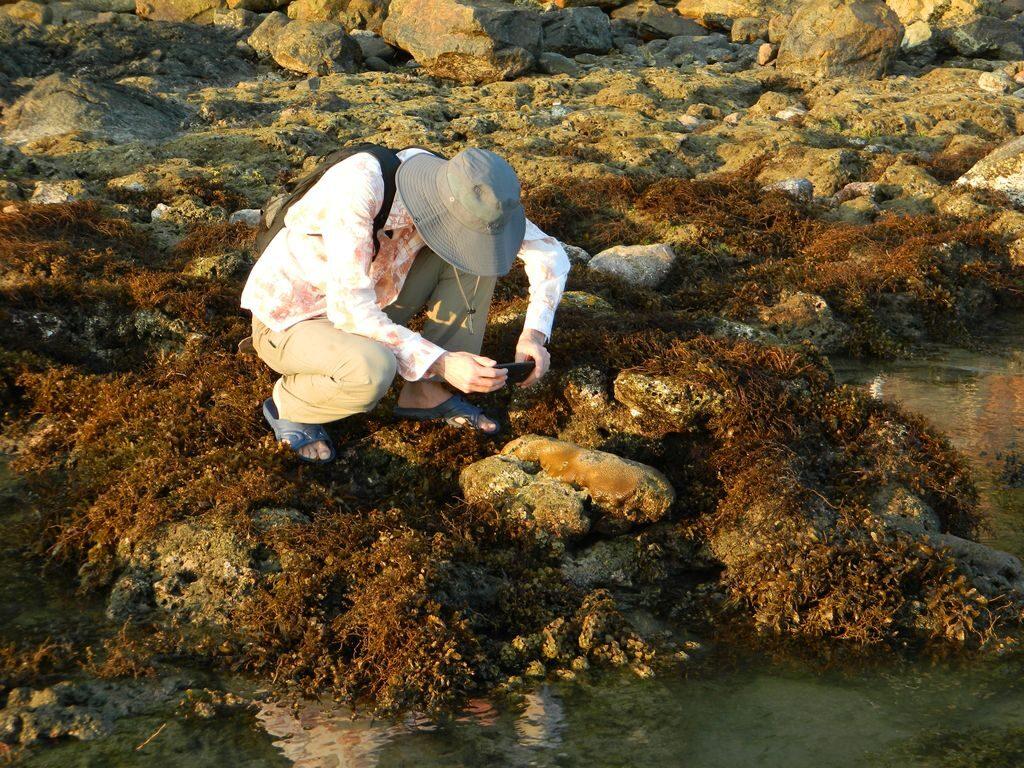 Кораллы на Хайнане