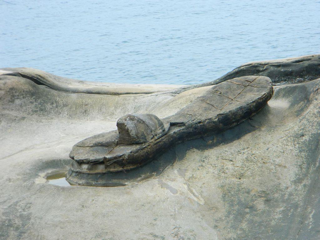 Камень похожий на тапок в геопарке Тайваня