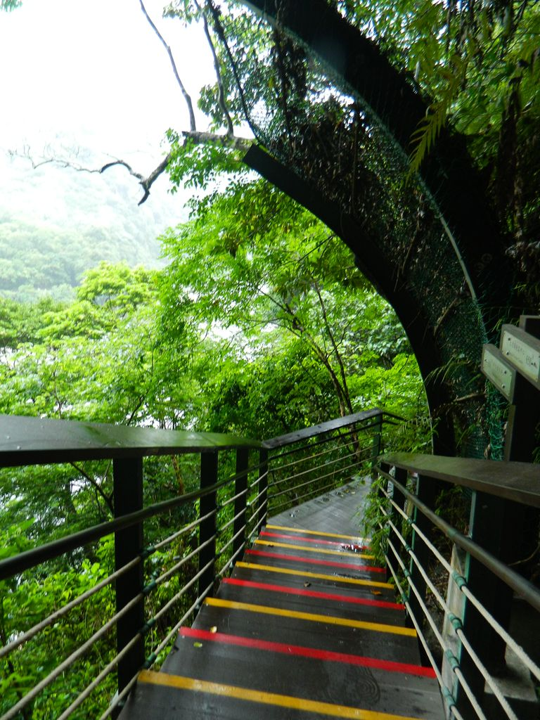 Xiaozhuilu Trail, Тароко