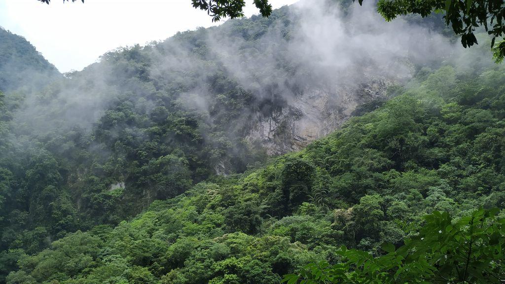 Туман и горы в парке Тароко