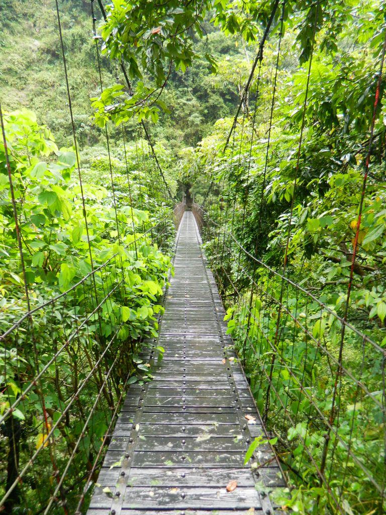 Подвесной мост к Changuang Temple Bell Tower, Тароко