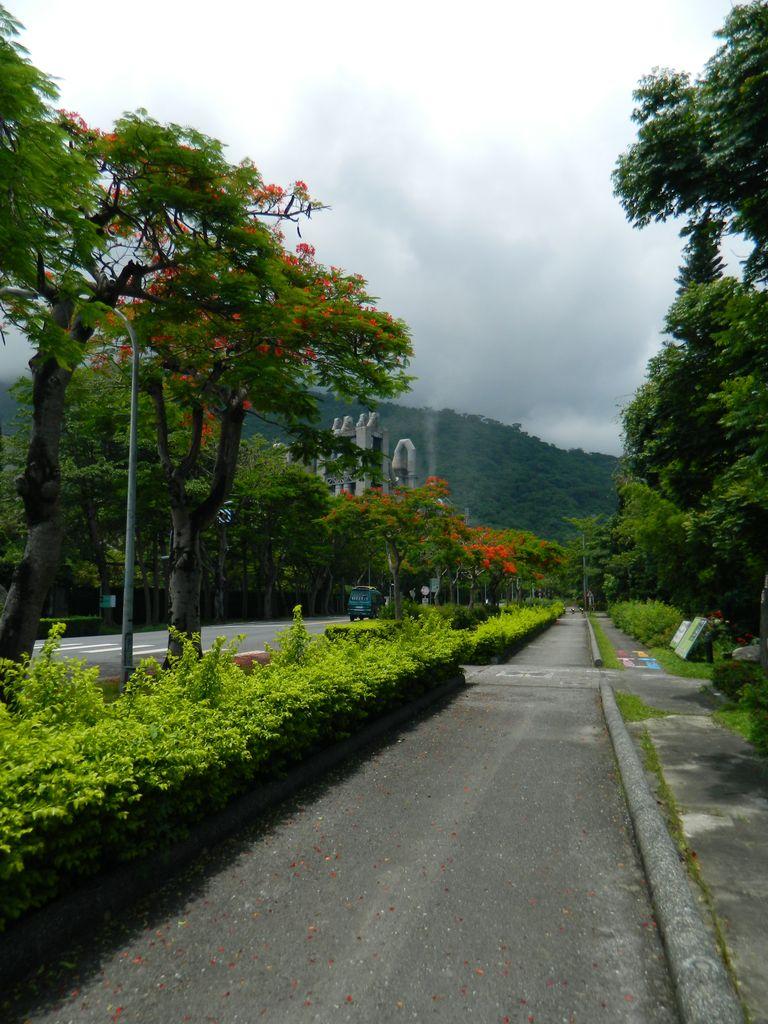 Путь к ущелью Тароко лежит мимо цементного завода, Тайвань