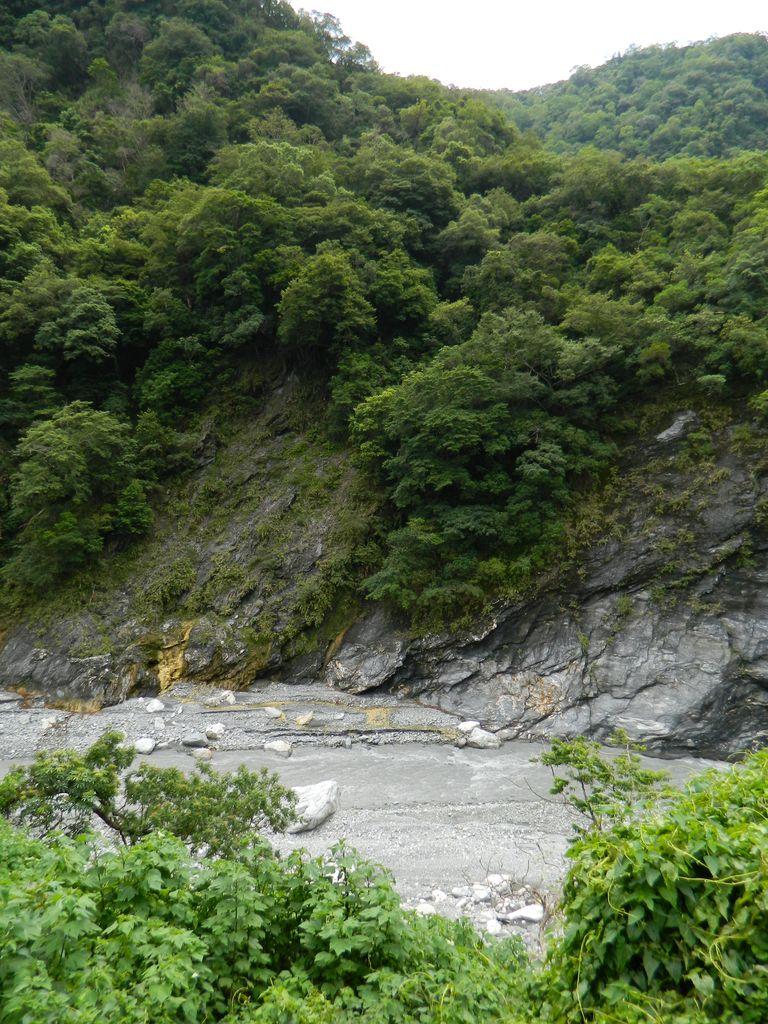 Река вдоль дороги, Тароко