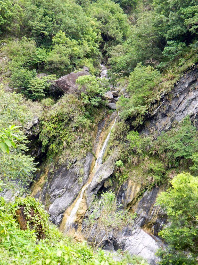 Tianxiang, Тароко